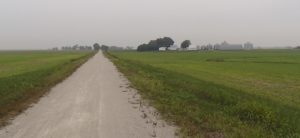 Long straight miles along the Madison County Transit Nickel Plate Trail